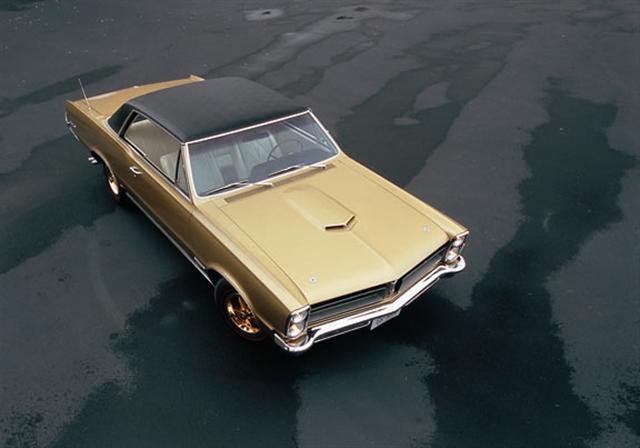 Gold GTO 65