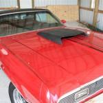 Cougar Project Car