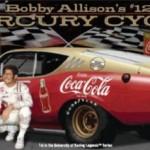 David Pearson and Bobby Allison NASCAR Diecast