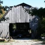 Barn Finds Found Part #3