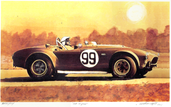 289 Cobra in burnt sienna. The author did this because he was working from a racing picture that was shot in black and white. Rather than guess what color it was he just painted it all in sepia
