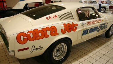 Photo of Don Nicholson Mustang 428 Cobra Jet